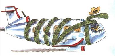 rssnakeplane.jpg